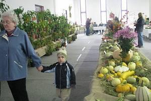 Okresní výstava Českého zahrádkářského svazu během víkendu představila v krnovském paláci Silesia tradiční přehlídku ovoce, zeleniny, květin i bonsají místních pěstitelů, sadařů a zahradníků.