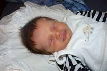 Jmenuji se MATYÁŠ SVOBODA a narodil jsem se 30. srpna 2012, měřil jsem 48 centimetrů a vážil jsem 3090 gramů. Moje maminka se jmenuje Andrea Svobodová a tatínek se jmenuje Miloš Svoboda. Bydlíme v Rýmařově- Janovicích.