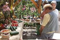 Ještě vloni si přišli na své obdivovatelé bohaté úrody v prostorách Květinky u Zdeňky, letos se pochlubí pěstitelé svou produkcí v areálu bruntálského zámku.