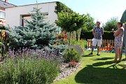 Soutěž Šedivé či zelené už dvacet let v Krnově hledá nejhezčí květinovou výzdobu a nápadité zahrady. Porota už posoudila přihlášené zahrady, okna, balkony i fotografie na téma zeleň ve městě.
