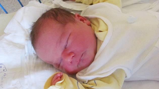 ALICE POLANSKÁ se narodila 7.března 2012 při narození vážila 3870 gramů a měřila 50 centimetrů, maminkou se stala Ivana Polanská a tatínkem se stal Pavel Polanský, Brumovice