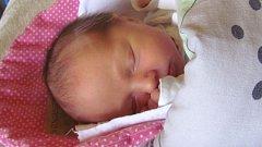Jmenuji se JULIE SVOBODOVÁ, narodila jsem se 30. října, při narození jsem vážila 3250 gramů a měřila 50 centimetrů. Moje maminka se jmenuje Tereza Daňková a můj tatínek se jmenuje Pavel Svoboda. Bydlíme v Krnově.