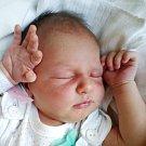 Jmenuji se MARIE ŠTÍBROVÁ, narodila jsem se 27. června, při narození jsem vážila 3595 gramů a měřila 50 centimetrů. Rodiče se jmenují Milena a Ota, doma se na mě těší sourozenci Ondřej, Šimon a Matěj. Bydlíme v Jindřichově ve Slezsku.