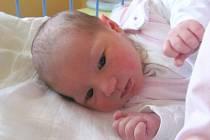 Jmenuji se TEREZA BENEŠOVÁ narodila jsem se 8. ledna, při narození jsem vážila 3330 gramů a měřila 50 centimetrů. Moje maminka se jmenuje Martina Hošková a tatínek se jmenuje František Beneš. Bydlíme v Městě Albrechticích.
