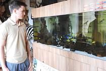 V safari v Holčovicích mohou návštěvníci vidět nejen desítky trofejí a exponátů zvěře, ale nově také velkoobjemové akvárium s rybami z afrického jezera Malawi.