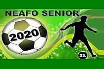 Liga Neafo senior