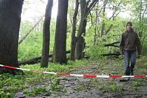 Silnice, která spojuje krnovský Salvátor se cvilínskými schody, je stále uzavřená, protože ji přehradily vývraty mohutných stromů a technické služby nestačí kalamitu likvidovat.