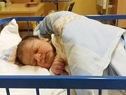 Jmenuji se GABRIEL PECHA, narodil jsem se 20. ledna, při narození jsem vážil 3400 gramů a měřil 48 centimetrů.