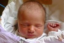 Jmenuji se GABRIELA ŠELEPSKÁ, narodila jsem se 8. listopadu, při narození jsem vážila 2860 gramů a měřila 47 centimetrů. Moje maminka se jmenuje Kristýna Šelepská. Bydlíme ve Městě Albrechticích.