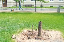 Místo, kde ještě minulý týden stávala šestimetrová dřevěná plastika, dnes poznáme už jen podle betonového podstavce a hromádky pilin.