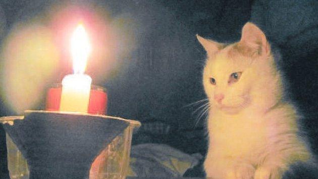 Hodina Země je příležitost k posezení s přáteli při svíčkách.