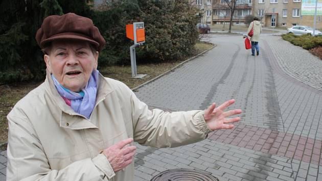 Helena Benischová ukazuje směr, kterým utekl zloděj i s její taškou. Asi po roce šetření a sbírání důkazů policie darebáka dopadla, takže nedávno se oběť a pachatel znovu setkali tváří v tvář u soudu.