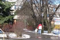 Plácek u vstupu do Podhorské nemocnice v Bruntále bude v rámci obnovy zeleně na Nádražní ulici osázen novými keři a stromy. Výsadbě ale musí ustoupit tři lípy, které odborníci doporučili pokácet.