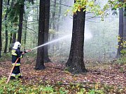 Albrechtičtí hasiči si s polskými kolegy rozumí, nedávno společně absolvovali nácvik hašení lesního požáru. Obě jednotky získají díky mezinárodní spolupráci nová vozidla.