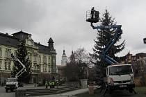 Krnov letos nazdobil na náměstí hned tři vánoční stromy. Jeden darovala rodina Rybářova a byl přivezen z Linhartov a další dva jsou živé. Nazdoben byl stříbrný smrk za pódiem i platan naproti Bauerovy kavárny.