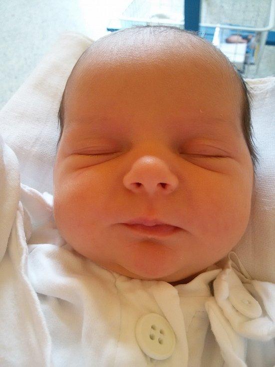 Jmenuji se BARBORA KRUŠINOVÁ, narodila jsem se 13. Dubna 2017, při narození jsem vážila 3115 gramů a měřila 47 centimetrů. Moje maminka se jmenuje Markéta Krušinová a můj tatínek se jmenuje Petr Krušina, doma se na mě těší bráška Matyáš. Bydlíme v Krnově.