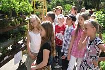 Skalničky nebo bonsaje rozhodně nejsou něčím, co by fascinovalo pouze dlouholeté pěstitele. Kvůli své kráse jsou vyhledávanou pa- stvou pro oči také pro děti. Ty se přišly podívat na loňskou výstavu.
