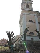 Ořez dřevin na náměstí Sv. Michala.
