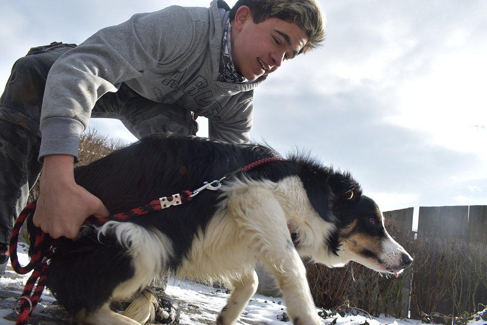 Tomáš Scholz s podporou rodiny a přátel provozuje ve Slezských Pavlovicích psí útulek a psí hotel.