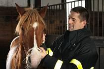 Všude dým a hasiči vyvádějící v dýchací technice koně ze stájí. Takový obraz se naskytl v areálu Jezdecké školy Amír v Rudné pod Pradědem. Cvičení na záchranu zvířat předcházel ostrý zásah u požáru v Břidličné.