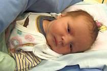 Jmenuji se KUBÍK UŠELA, narodil jsem se 31. prosince, při narození jsem vážil 2970 gramů a měřil 48 centimetrů. Moje maminka se jmenuje Kateřina Ušelová a můj tatínek se jmenuje Antonín Ušela. Bydlíme ve Vrbně pod Pradědem.