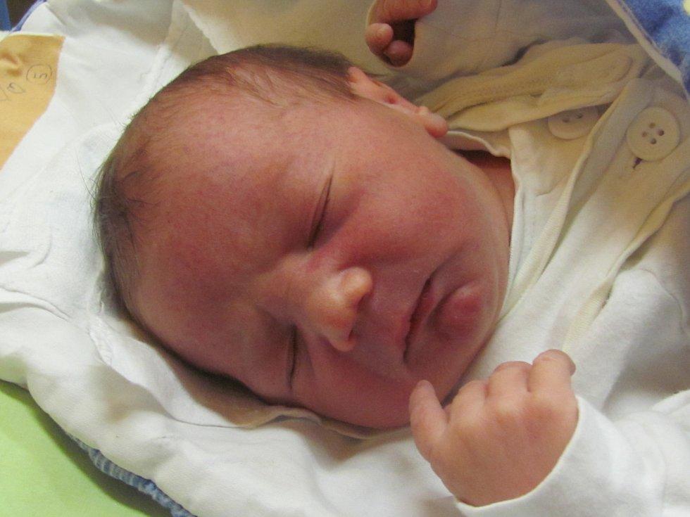 Jmenuji se DOMINIK HAVLÍK, narodil jsem se 2. Ledna 2019, při narození jsem vážil 3030 gramů a měřil 47 centimetrů. Rýmařov
