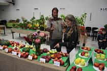 Jaké odrůdy ovoce se pěstují na Krnovsku? Odpověď dává každoroční výstava Českého svazu zahrádkářů. Letos proběhla ve Slezském domově a doplnila ji ochutnávka odrůd v Chomýži.