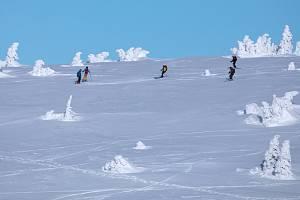 Chráněná krajinná oblast Jeseníky láká turisty, skialpinisty a další zájemce.