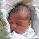 Jmenuji se FRANTIŠEK PEČO, narodil jsem se 6. listopadu, při narození jsem vážil 2500 gramů a měřil 46 centimetrů. Moje maminka se jmenuje Alexandra Pečová a můj tatínek se jmenuje František Žida. Bydlíme v Krnově.