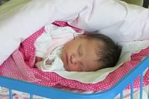 Jmenuji se ADÉLA HANUŠČÁKOVÁ, narodila jsem se 2. prosince, při narození jsem vážila 3450 gramů a měřila 48 centimetrů. Moje maminka se jmenuje Veronika Hanuščáková a můj tatínek se jmenuje Marek Hanuščák. Bydlíme v Dívčím Hradě.