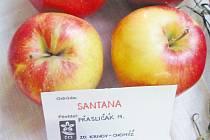 Odrůda Santana se v roce 2013 stala senzací na okresní zahrádkářské výstavě v Krnově, kde vyhrála soutěž Jablko roku. Letos jablka Santana z Krnova byla vyhodnocena jako nejlepší jablko prestižní celonárodní zahrádkářské expozice Flory Olomouc 2016.