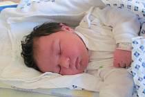 NATÁLIE JURÁKOVÁ se narodila 14.prosince 2011, vážila 3620 gramů a měřila 51 centimetrů, maminkou je Petra Juráková, tatínkem je Tomáš Jurák, Krnov