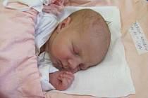 Jmenuji se NIKOLA KITTNEROVÁ, narodila jsem se 15. března, při narození jsem vážila 3050 gramů a měřila 48 centimetrů. Moje maminka se jmenuje Helena Kittnerová a můj tatínek se jmenuje Petr Kittner. Bydlíme v Krnově.