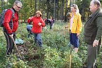 Do rekordu ve vysazování stromků se zapojilo také 63 Krnovanů, kteří v revíru Cvilín v pátek vysázeli 380 buků.