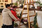 Letos poprvé se konala výstava skalničkářů v aule obchodní akademie v Bruntále, kde je umístěna rovněž stálá expozice nejvýznamnějšího bruntálského malíře Karla Adámka.