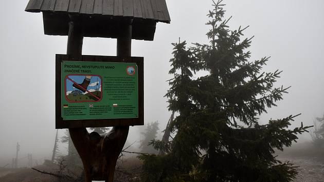 Chráněná krajinná oblast Jeseníky - Ilustrační foto.