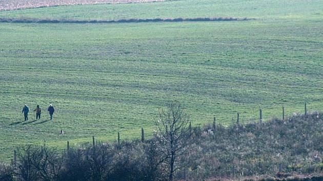 Česko-Polskou hranici u Krnova kopíruje plot nové rozlehlé obory. Snímek ukazuje pohled z polské strany hranice na pole u Krnova. Oplocenka má chránit stromky vysázené na úbočí kopce Barania kopa.