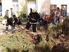 Bruntálští dobrovolní hasiči vloni v říjnu shazovali větrem zlomený strom na Palackého náměstí v Bruntále.