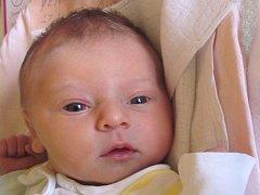 Jmenuji se ANDREA DŘIMALOVÁ, narodila jsem se 27. února, při narození jsem vážila 3185 gramů a měřila 48 centimetrů. Moje maminka Lucie Demelová a můj tatínek se jmenuje Martin Dřimal. Bydlíme v Bílčicích.