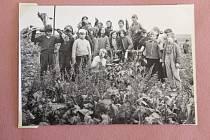 Děti z Leskovce si dokázaly najít i na poli chvíli k pobavení.  Fotografie pochází z archivu obce Leskovec nad Moravicí.
