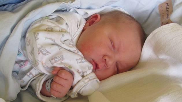 Jmenuji se MATĚJ MILKOVIČ, narodil jsem se 17. června, při narození jsem vážil 4390gramů a měřil 52 centimetrů. Moje maminka se jmenuje Irena Milkovičová a můj tatínek se jmenuje Petr Milkovič. Bydlíme v Krnově.