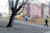 Javor na sídlišti Budovatelů vedle Rákosníčkova hřiště svádí k močení, proto ho místní chtěli pokácet. Odboru životního prostředí tento důvod ke skácení nestačí, takže strom čeká jen důkladná prořezávka koruny.