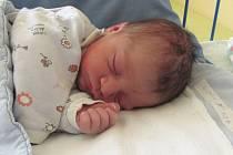 Jmenuji se DANEČEK WIDMAN PRAVDA, narodil jsem se 16. července, při narození jsem vážil 3865 gramů a měřil 52 centimetrů. Moje maminka se jmenuje Šárka Widmanová a můj tatínek se jmenuje Jan Pravda. Bydlíme v Ostravě.