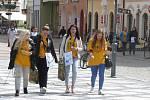 Krnované se ve středu 16. května zapojili do tradiční sbírky proti rakovině, jejímž symbolem je žlutý kvítek.