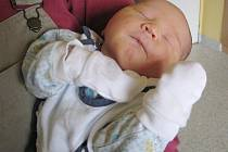 Mareček Bartusek, narozen 11.10.2010, váha 3, 820g, míra 50cm, Tábor 20. Maminka Zuzana Bartusková, tatínek Martin Bartusek.