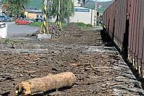 Vlakové nádraží ve Městě Albrechticích, odkud putovalo dřevo až na Ukrajinu. Město Albrechtice prodalo dřevo firmě Wood Source s.r.o. s tím, že ho zaplatí až dodatečně. Vývoz dřeva do zahraničí se zasekl kvůli celní byrokracii na Ukrajině.