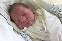 Jmenuji se ANNA MARIE DANIHELOVÁ a narodila jsem se 5.září 2012,měřila jsem 46 centimetrů a vážila jsem 2600 gramů.Moje maminka se jmenuje Margita Danihelová a tatínek se jmenuje Petr Danihel .Bydlíme v Krnově.