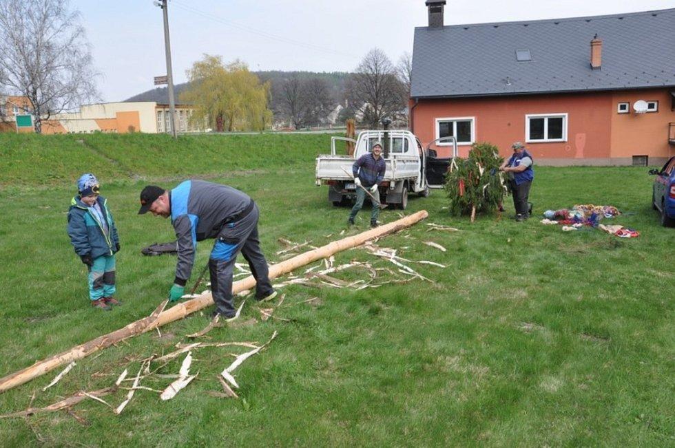 Fanoušci májových tradic v Třemešné v sobotu postavili májku. Postavili, ale neuhlídali. V neděli ráno ležela podříznutá na zemi.