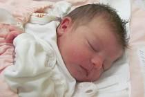 Jmenuji se AMÁLKA GAŠPARÍKOVÁ, narodila jsem se 21. října, při narození jsem vážila 2920 gramů a měřila 46 centimetrů. Moje maminka se jmenuje Kristýna Gašparíková a můj tatínek se jmenuje Jiří Kratochvíl. Bydlíme ve Vrbně pod Pradědem.