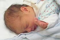 Jmenuji se SAMUEL STRKÁČ, narodil jsem se 26. listopadu, při narození jsem vážil 2750 gramů a měřil 47 centimetrů. Moje maminka se jmenuje Dominika Strkáčová a můj tatínek se jmenuje Bela Laci. Bydlíme v Krnově.